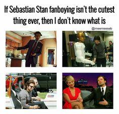 Sebastian ⭐ Stan