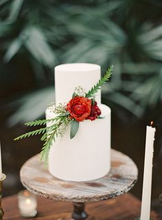 simple yet gorgeous cake // photo by Melanie Gabrielle // http://ruffledblog.com/woodsy-winter-dinner-party