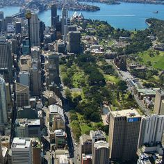 Hyde Park, Sydney, I lived across the street and had a view from my living room and bedroom....gorgeous!!!