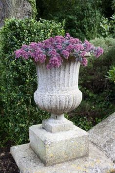 #garden #urn Garden Urns, Garden Planters, Planter Pots, Potted Garden, Garden Sheds, Vases, Flower Pots, Flowers, My Secret Garden