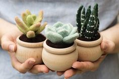 """This is the tutorial for Felted Sky Studio's """"Succulents"""" Needle Felting Kit. This technique is also called dry felting or sculpting with wool. The wool used. Needle Felting Tutorials, Needle Felting Kits, Needle Felted Animals, Wet Felting, Beginner Felting, Felted Wool Crafts, Felt Crafts, Felt Succulents, Succulent Plants"""