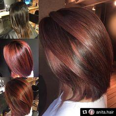 "39 likerklikk, 2 kommentarer – Hendrix hair Drammen (@hendrixhairdrammen) på Instagram: ""#Repost @chlarseen with @repostapp ・・・ So bright and shiny✨ @hendrixhair @hendrixhairdrammen…"" Long Hair Styles, Instagram Posts, Color, Beauty, Colour, Long Hair Hairdos, Cosmetology, Long Hairstyles, Colors"