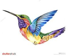 Illustration about Hummingbird tattoo, watercolor painting. Illustration of blurred, color, image - 54514275 Hummingbird Tattoo Watercolor, Hummingbird Tattoo Meaning, Hummingbird Drawing, Watercolor Feather, Watercolor Animals, Watercolor Paintings, Colorful Hummingbird Tattoo, Hummingbird Quotes, Watercolor Tattoo