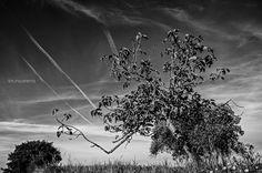 Il cielo e i suoi frammenti... by Bruno Arena on 500px