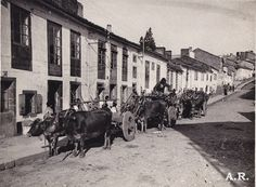 Colección de fotografía antigua: Santiago de Compostela. Fotógrafo F. Ribera Llopis. Puertoferrisa 15 Barcelona