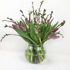 Frühling mit Tulpen und Weidekätzchen