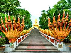 Things to do in Pattaya  Pattaya attractions