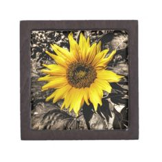 Choose from a variety of Sunflower gift boxes on Zazzle. Our keepsake boxes are great places to hold valuables like jewelry. Sterling Silver Jewelry, Antique Jewelry, Gold Jewelry, Jewelry Box, Jewelry Accessories, Sunflower Jewels, Sunflower Gifts, Gift Boxes For Sale, Keepsake Boxes