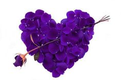 Lavender it was your color Natty Girl.  Beautiful color for a beautiful girl. Missing my my Baby Girl on Valentines Day.