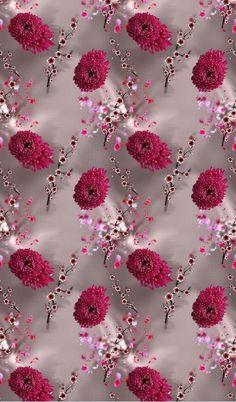 Bernadette Wilson's media statistics and analytics Rose Background, Flower Background Wallpaper, Flower Phone Wallpaper, Butterfly Wallpaper, Flower Backgrounds, Royal Wallpaper, Flowery Wallpaper, Abstract Iphone Wallpaper, Colorful Wallpaper