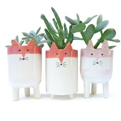 Three Fox Plant Pots - Minky Moo