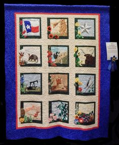 Sue Garman: Quilting Across Houston!
