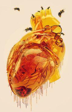 Honey Anatomical Heart Art