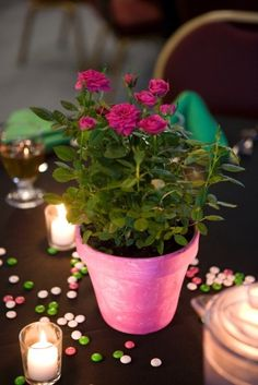 Potted centerpieces might be a great idea, and then guests can take them home.