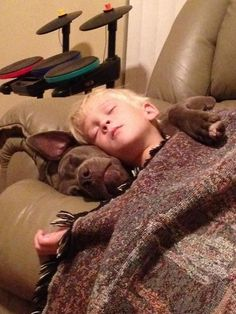 Having a Pit Bull pillow shows their closeness. Love the dogs arm on boys shoulder.