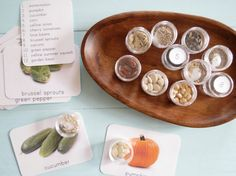 Seed Matching Montessori Primary Seed Sorting & by freespiritkids, $36.50