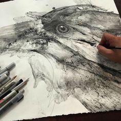 Illustrations d'animaux par Glen Ronald - Journal du Design