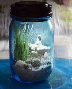 Ariel colecciona jarras así con arena y conchas de las playas a las que va. Todas tienen una etiqueta con el nombre de la playa y la fecha en la que fue.