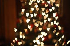 the sparkling lights