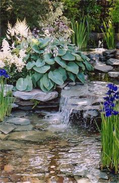 Blue Iris Blooms at Water's Edge in This Lovely Water Garden -- With A Large Blue Hosta And White Astilbe Blooms As Back Up for This Area of the Shade Garden. Outdoor Water Features, Water Features In The Garden, Backyard Water Feature, Ponds Backyard, Backyard Waterfalls, Garden Ponds, Ponds With Waterfalls, Garden Stream, Stream Bed