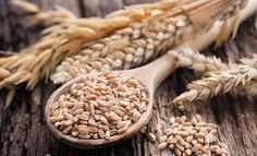 How to Grow and Harvest Grains in Your Backyard - http://modernfarmer.com/2015/08/how-to-grow-and-harvest-grains-in-your-backyard/?utm_source=PN&utm_medium=Pinterest&utm_campaign=SNAP%2Bfrom%2BModern+Farmer