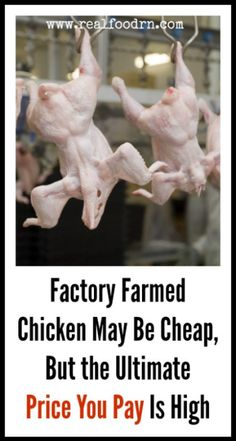 Factory Farmed Chicken May Be Cheap, But the Ultimate Price You Pay Is High | Real Food RN- dr. mercola