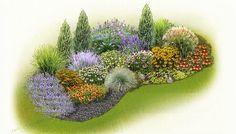 A Drought-tolerant Garden Bed