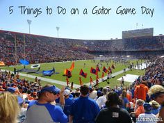 5 Things to Do on a Gator Game Day in Gainesville, FL