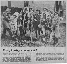 South Belt Houston Digital History Archive: 1978 Stuchberry Arbor Day