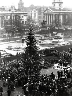 The first Norwegian Christmas tree in Trafalgar Square, London, Every year since Norway has sent a tree in thanks for the UK's support for the country during London History, British History, World History, Uk History, History Class, Vintage London, Old London, Old Photos, Vintage Photos