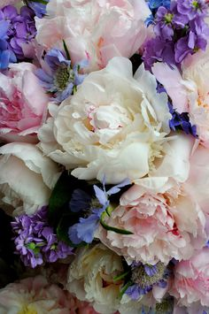 Gorgeous peonies...hoping to have a few of these to pick from my garden in a few months!