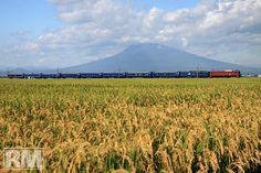 "Express""Akebono"", HIrosaki Aomori Japan Train, Aomori, Speed Training, High Speed, Trains, Japanese, Mountains, Outdoor, Outdoors"
