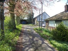 3 bedroom detached bungalow for sale in Selby Road, Thorne, Doncaster - Rightmove. Bungalows For Sale, Property For Sale, Sidewalk, Country Roads, Plants, House, Walkways, Haus, Plant