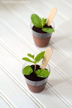 potted plant chocolate puddings, great party catering idea!!!