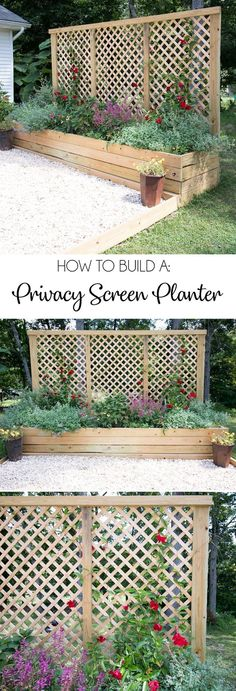 Screen Planter DIY- an inexpensive weekend project with major impact!, Privacy Screen Planter DIY- an inexpensive weekend project with major impact!, Privacy Screen Planter DIY- an inexpensive weekend project with major impact! Diy Gardening, Organic Gardening, Gardening Quotes, Gardening Vegetables, Privacy Landscaping, Garden Landscaping, Privacy Ideas For Backyard, Landscaping Software, Landscaping Design