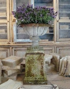 English 19th Century Cast Iron Urn in Garden from Appley Hoare