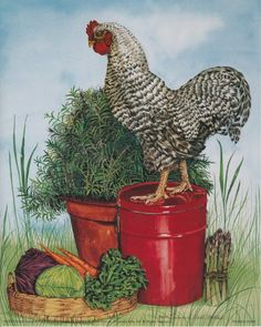 Absolutely stunning! Bring farmyard charm to your wall with this rock rooster art print poster. Vibrant hues and intricate detail make this chicken poster a treasured gift or element of kitchen decor. Hurry up and buy this charming wall poster for its wonderful paper quality with perfect color accuracy.