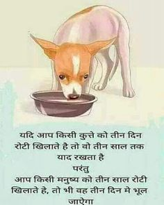 Dog save this Good Thoughts Quotes, Good Life Quotes, Attitude Quotes, Love Quotes, Funny Quotes, Good Morning Friends Quotes, Hindi Good Morning Quotes, Believe In God Quotes, Quotes About God