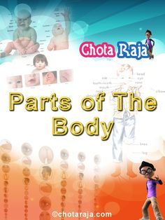Learn Parts of the body-e Learn with Chota Raja
