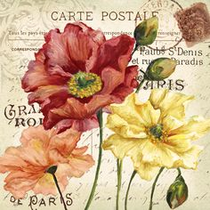 RB5892TS <br> Le Fleur Poppy I <br> 18x18