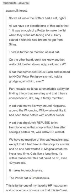 Harry Potter Headcanon that Crookshanks was the Potters' cat. Harry Potter Love, Harry Potter Universal, Harry Potter Fandom, Harry Potter Memes, Harry Potter Fan Theories, Headcanon Harry Potter, Potter Facts, Fandoms, Movies Quotes