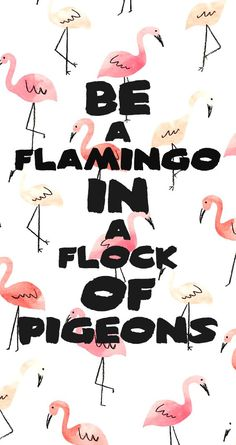 I didn't save this because of the quiz i saved it because of the quote, BE A FLAMINGO!