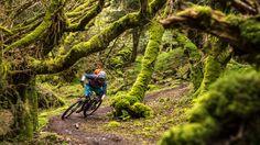 11 Freeride Mountain Bike, Mountain Biking, Mtb, Scotland Mountains, Bike Magazine, Enduro, Scotland Travel, The Locals, Sheep