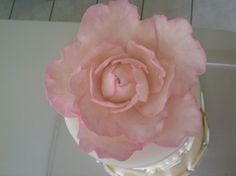 flower Wedding Cakes, Rose, Flowers, Plants, Wedding Gown Cakes, Pink, Wedding Cake, Florals, Roses