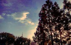 #clouds #cloudphotography #cloudporn #cloudscape #cloudstagram #skyphotography #skyporn #instaclouds #instasky #bluesky #naturalphotography #naturephotography #instanature #cali_grammers #aGameofTones #artofvisuals #feedbacknation #moodygrams #FatalFrames #moodygrams #gearednomad #fireinthesky #shadowphotography #shadows #silhouette #sunlight #BadSeedPhotography by maddd_professor