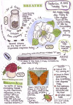 By Naturegrl64 (Diana). Nature, journal, sketchbook, notebook, dairy, words and images, drawing.