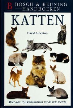 Katten - David Alderton