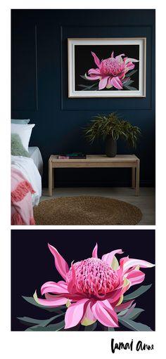 Dark Waratah wall art by Australian artist Lamai Anne. Bring the beautiful Australian outdoors into your home. Australian Native Flowers, Australian Artists, Ruby Room, School Murals, Limited Edition Prints, Art Music, All Print, Art Studios, Digital Paintings