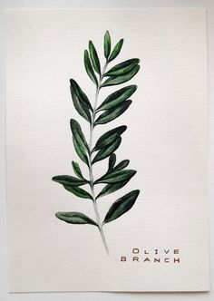 Olive branch от WildhomeCrafts на Etsy
