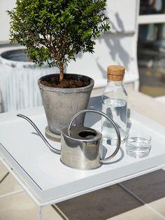 Stramt moderna solsängar, gröna växter och en enkel vattenspegel skapar känslan av en semester resort vid Medelhavet.